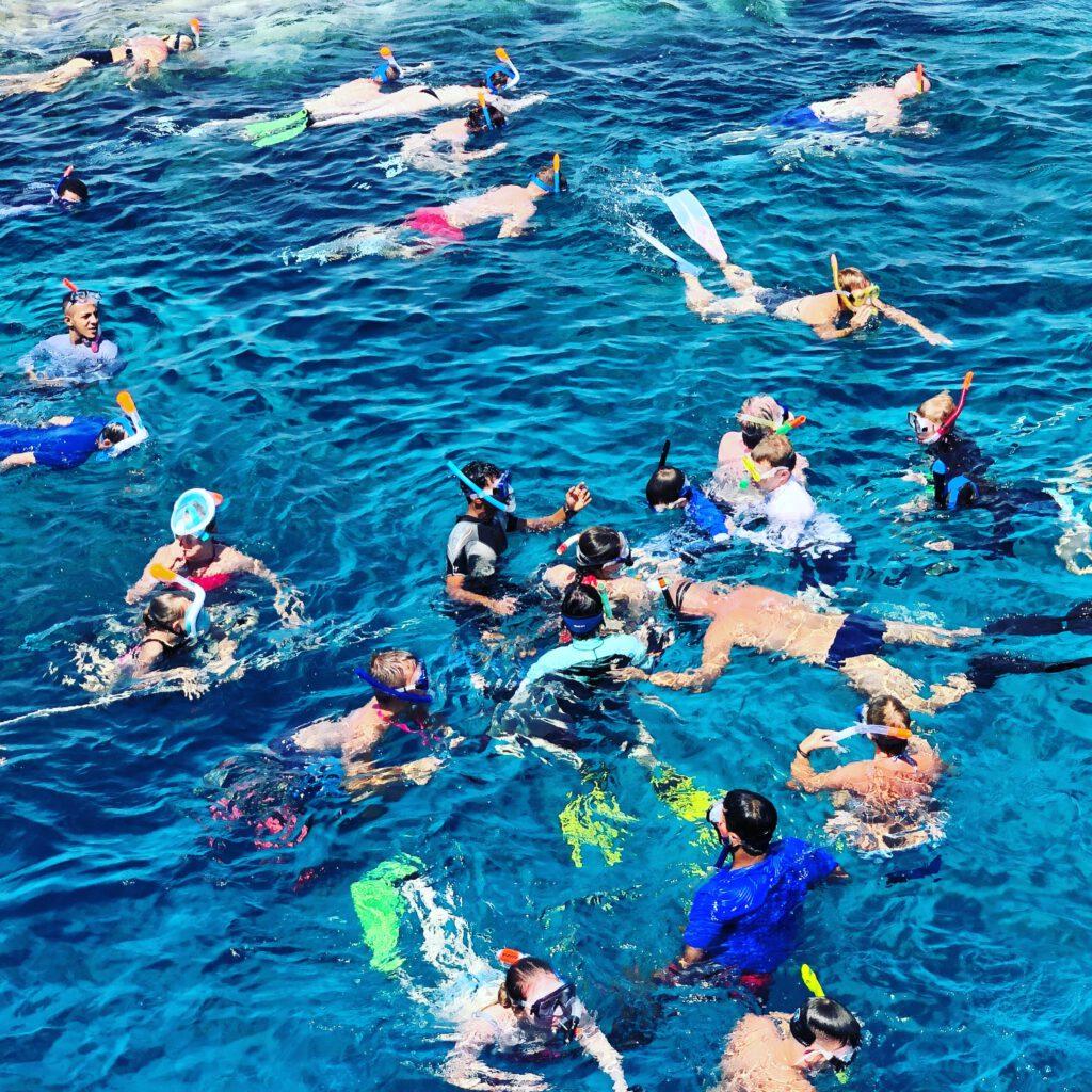 Der Einsatz von Schwimm- und Taucherbrillen kann dabei helfen, rechtzeitig auf Hindernisse aufmerksam zu machen. So wie hier auf zahlreiche Mitschwimmer.
